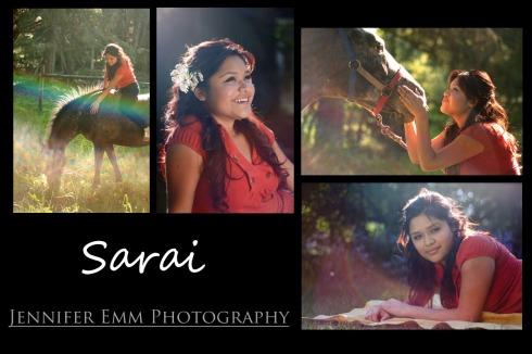 Sarai_horse